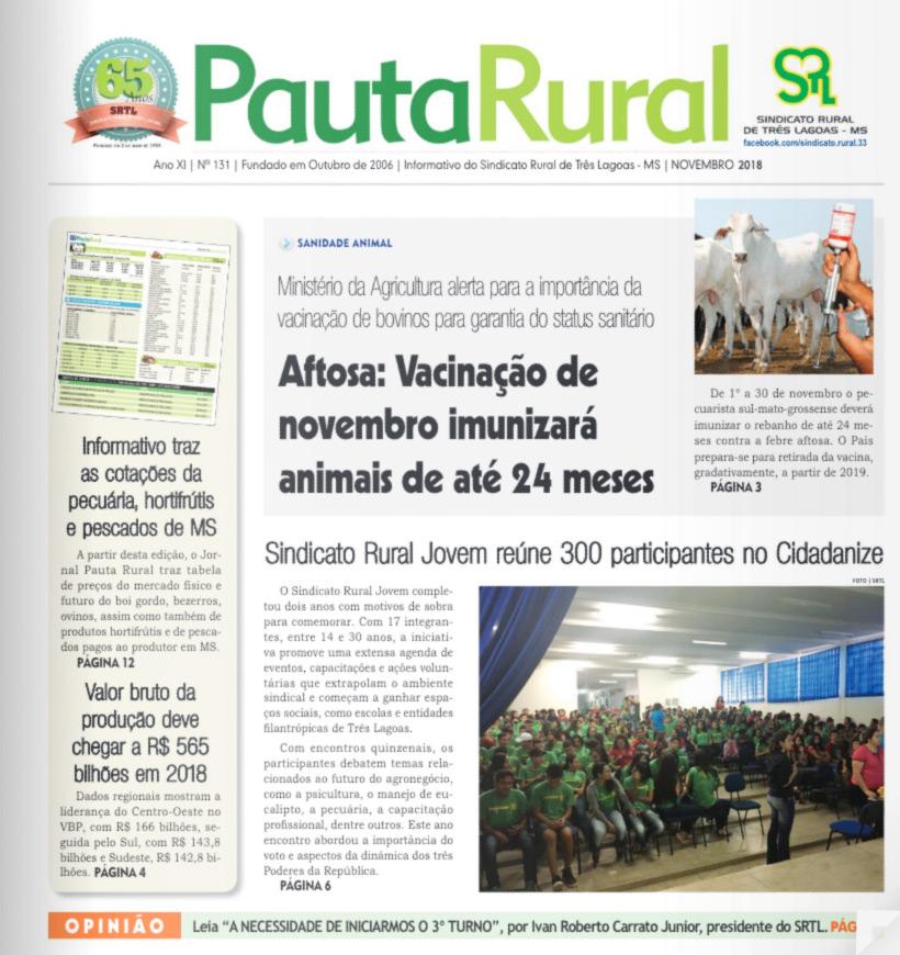 pauta-rural-novembro-2018